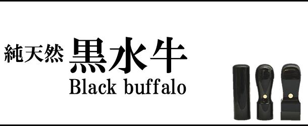 黒水牛比較